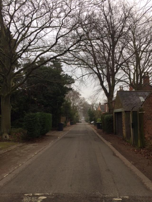 Grove Ave winter